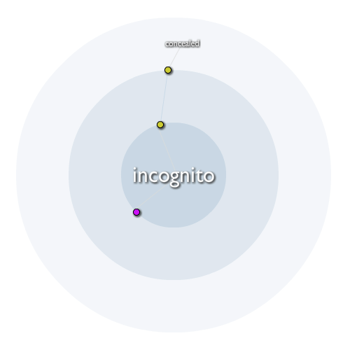 What Is The Meaning Of Incognito